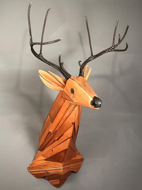 Mule Deer Bust