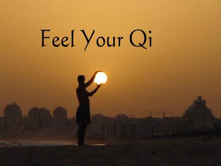 Wild Goose Qigong, Restorative Yoga, & Aromatherapy Workshop