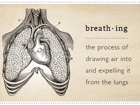 The Alchemy of Breath: 5 Week Series of Pranayama & Breathwork