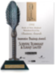 Innovative business award
