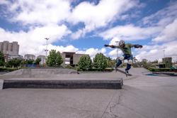 Skate-2c