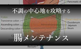 top_menu10.jpg