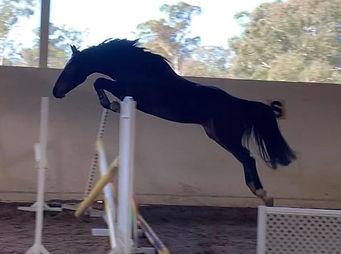 Cabochon jumping