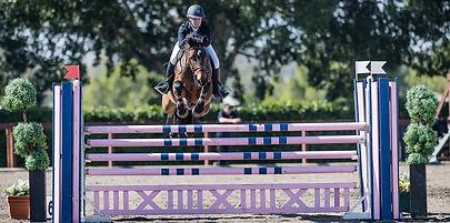 Bronte Webb BJW Equine Cera Cadett.jpg