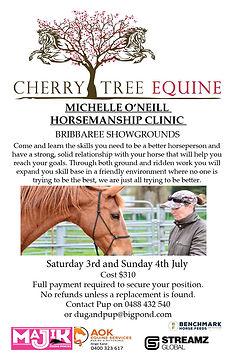 2021-07-03 Bribbaree Horsemanship Clinic