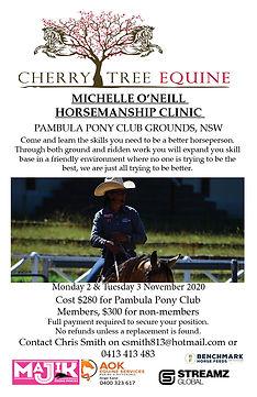 2020-11-02 Pambula Horsemanship Clinic.j