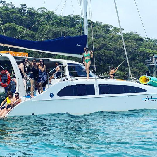 Aqua Lily Pad on boat.jpeg