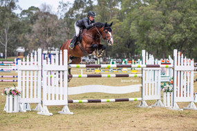 Cera Charisma Australian Jumping