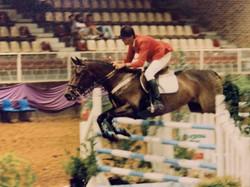 Schleswig Cognac Horseworld WC reduced