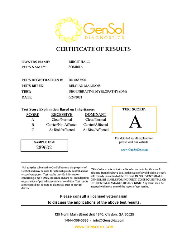GensolResult289602-page-001.jpg