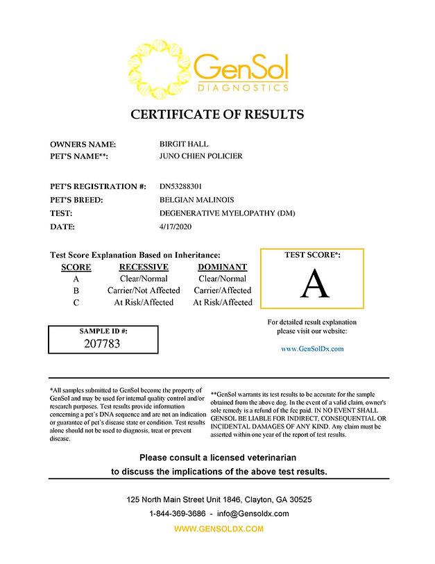 GensolResult207783-page-001.jpg