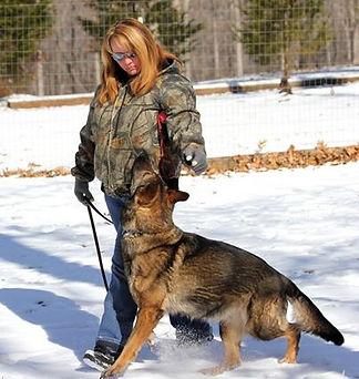 What is Schutzhund Belgian Malinois Breeder