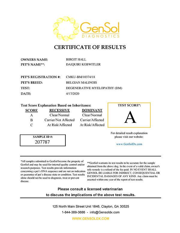 GensolResult207787-page-001.jpg