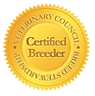Certified Belgian Malinois Puppies