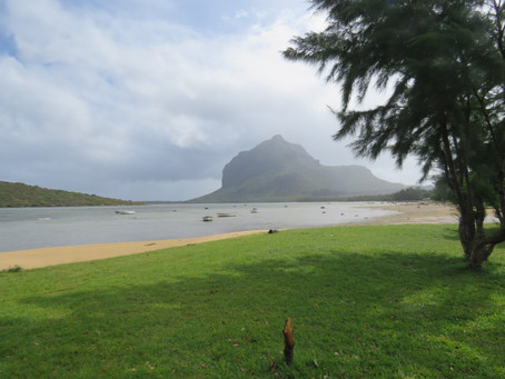 A lovely day around Le Morne Village!
