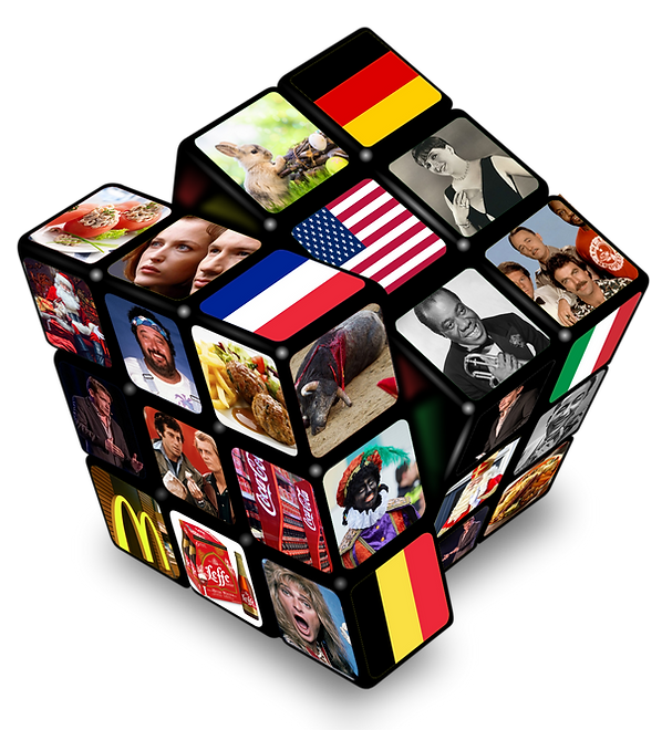 montage Cube avec photos réduit.png