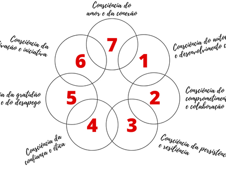 As sete consciências e a evolução profissional - Parte 01