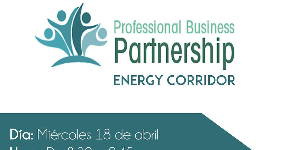 Professional Business Partnership