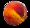 frisches Peach