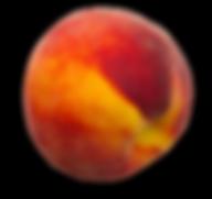Fuzzy Peach - Skin before Dermaplanning
