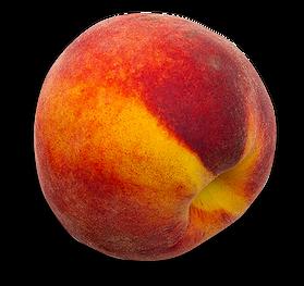 Fruit and Longevity Part 1