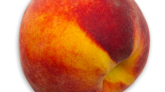Fresh Picked Peaches