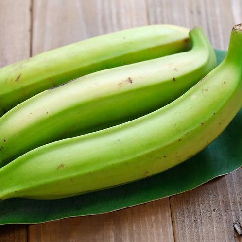 Banana Burro (Vazhakkai) Plantain