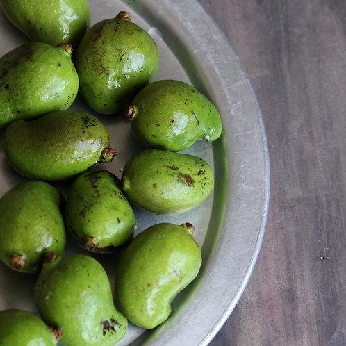 Green Mango (Small)