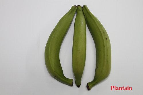 Plantain(long)