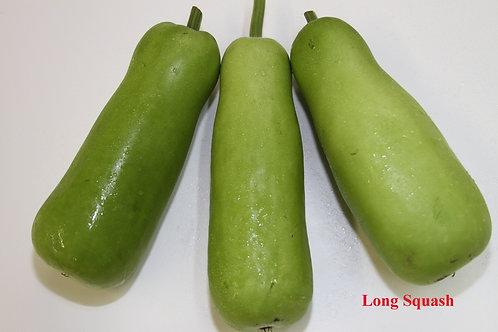 LongSqash