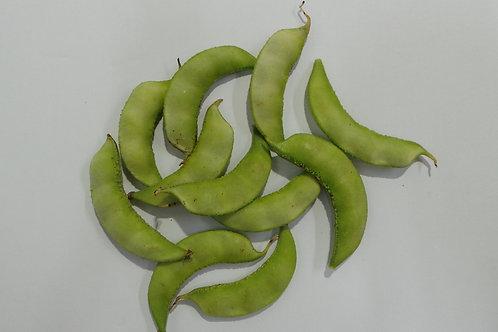 SurtiPapdi