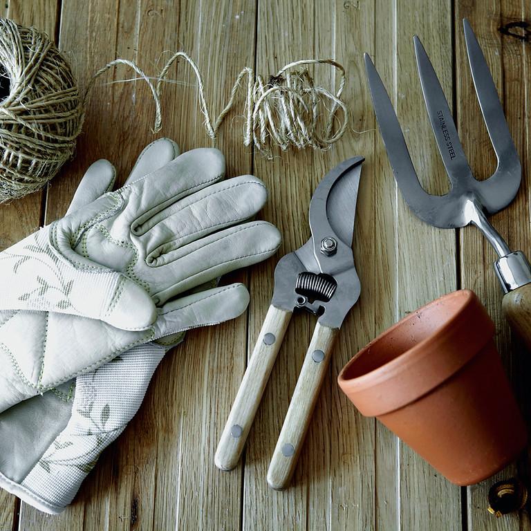Jardinagem Ecológica - Iniciante (1)