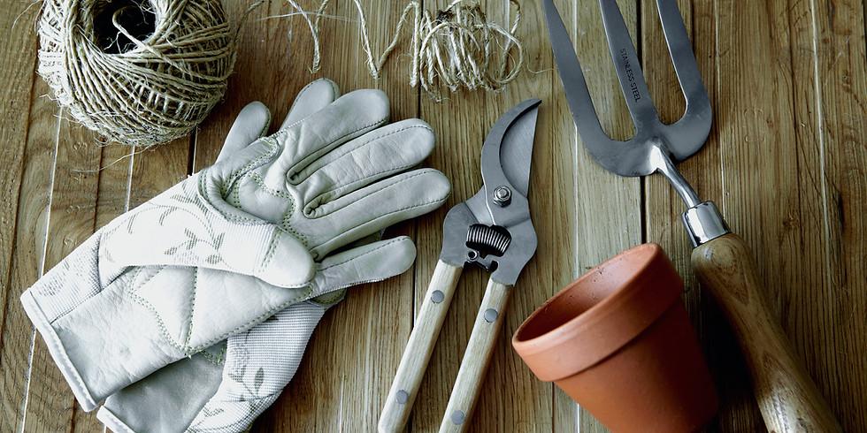 Jardinagem Ecológica - Iniciante