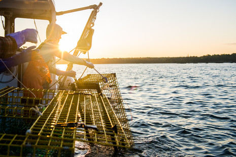 Documenting a morning aboard Jett Set ~ Lobstering Penobscot Bay ~ Patience Cleveland Photography