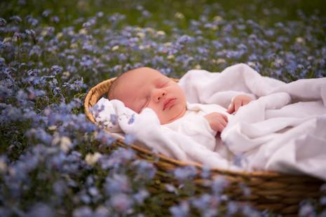 Beautiful baby/beautiful flowers