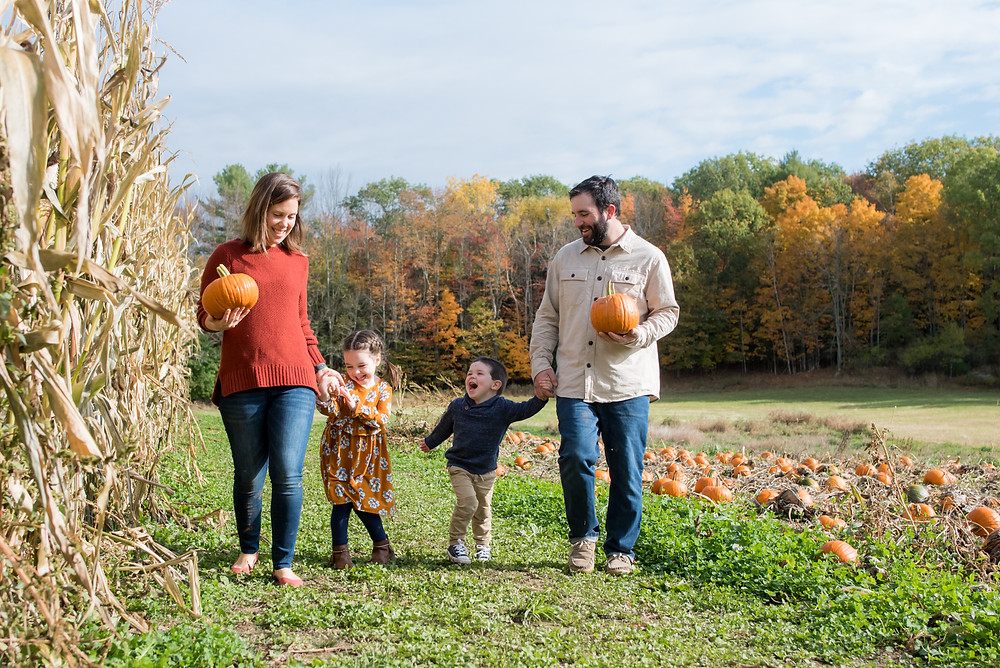 family picking pumpkins