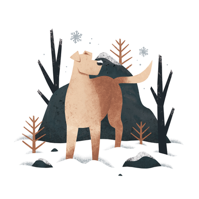 Snow Dog | Emily Dayson