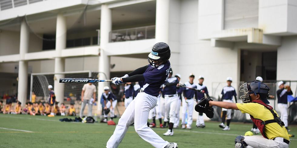 Baseball Hitting Fundamentals (Age 13+) (2)