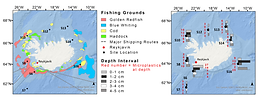 Role of oceanographic processes and sedimentological settings on the deposition of microplastics in marine sediment: Icelandic waters