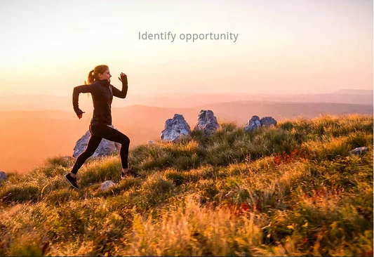 Identify opportunity photo.png