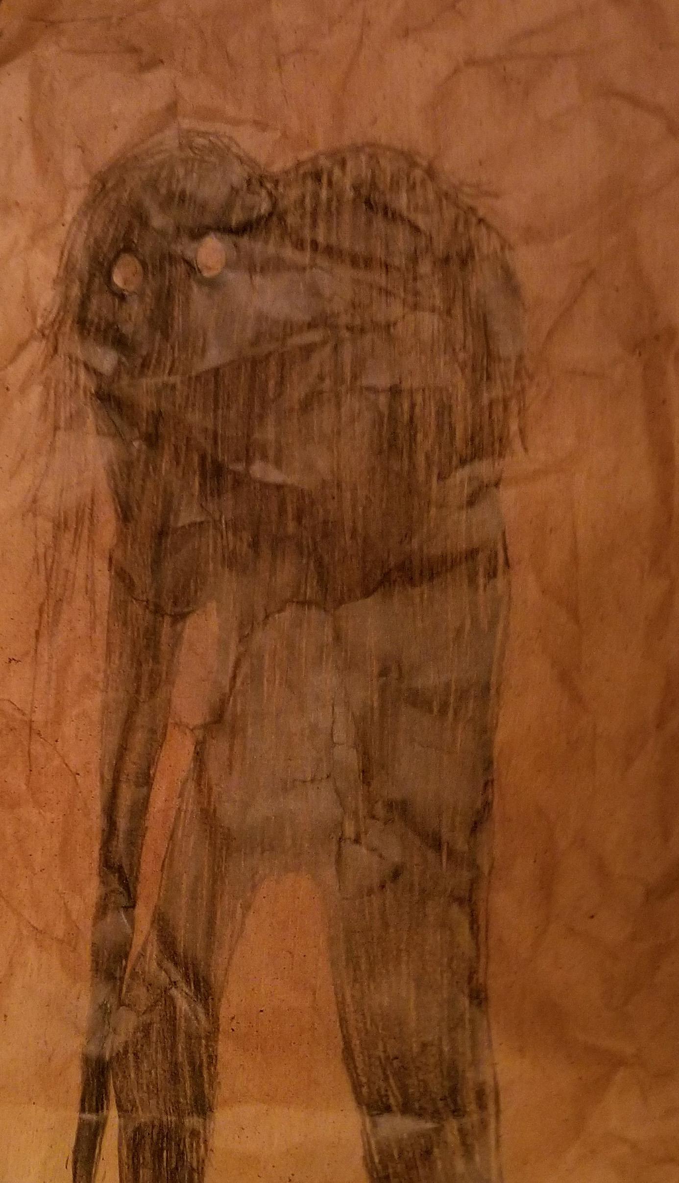David's Sketch