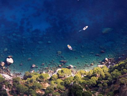 Saving the deep blue sea