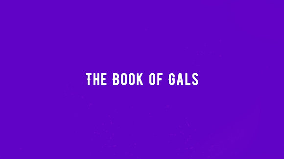 Pre-Order the 2021 Book of Gals Diary