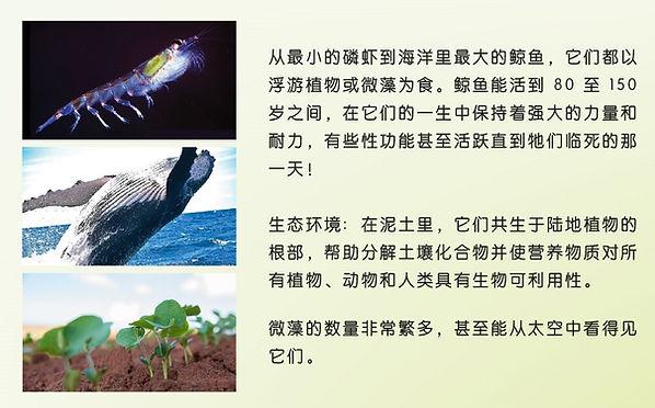 Slide 6d.jpg