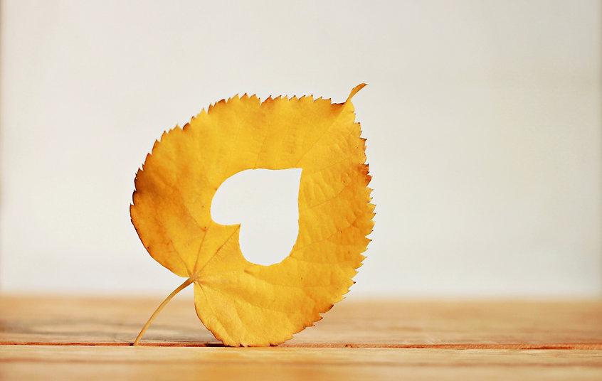 Golden autumn leaf heart shape romantic fall season background gold foliage wooden surface