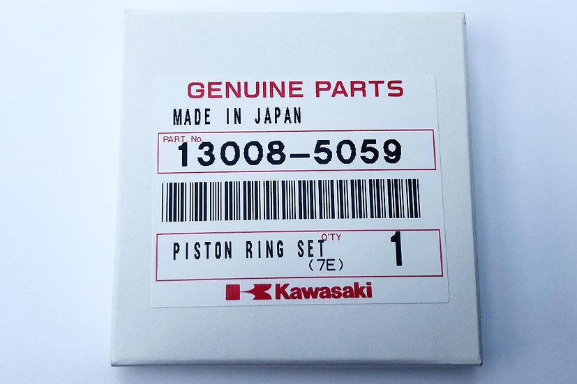 13008-5059 Piston Ring Standard