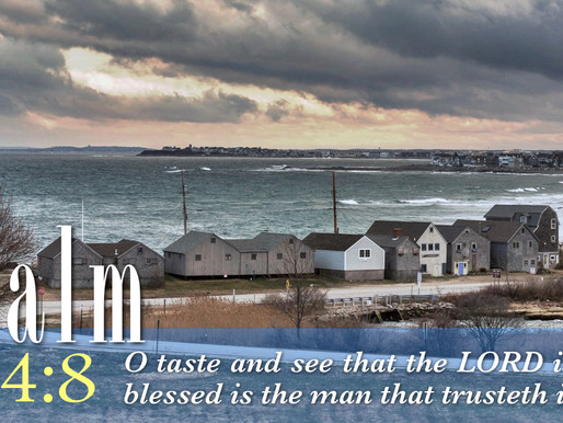 Bible Verse of the Day: Psalm 34:8