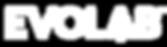 evolab_logo-notag-ko.png