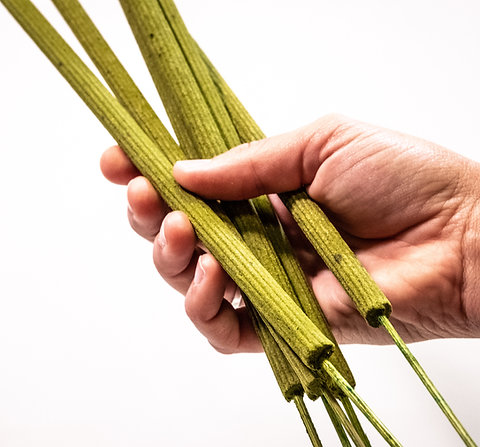Lemongrass Mosquito Repellant Incense Sticks