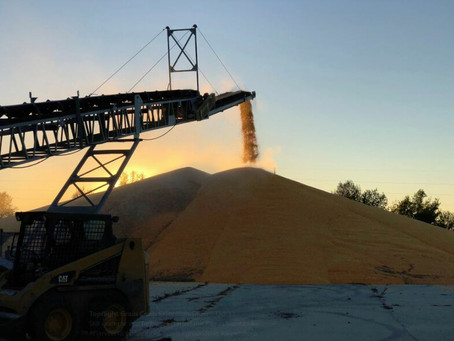 China Purchases Large Order of U.S. Corn and Wheat